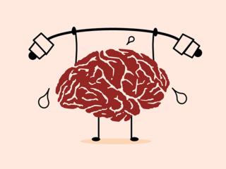 brain-dumbell